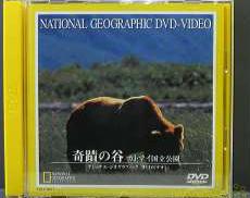DVD 奇蹟の谷 カトマイ国立公園 ジャンル:自然/ワールド|TOSHIBA
