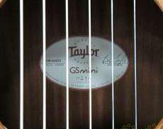 エレアコ|TAYLOR