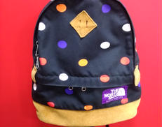 nn7054n|THE NORTH FACE PURPLE LABEL