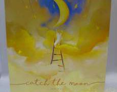 キャッチ・ザ・ムーン日本語版(Catch the Moon)|ホビージャパン