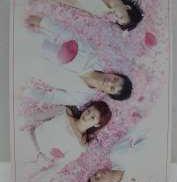 FIRST LOVE DVD-BOX|PONY CANYON