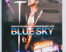BLUE SKY GARURU RECORDS