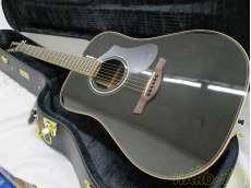 アコースティックギター HISTORY