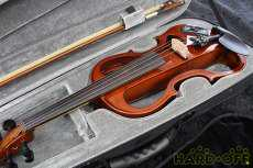 エレクトリックヴァイオリン|Hallstatt