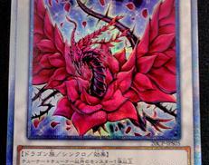 遊戯王 ブラックローズドラゴン|KONAMI